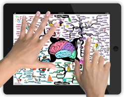 How does mind map work?